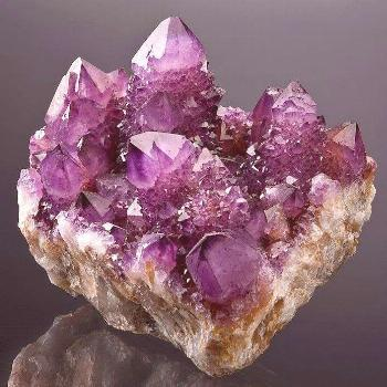Cactus Amethyst crystals on matrix from the Magaliesburg Mts., Pretoria, Gauteng Province, South Af