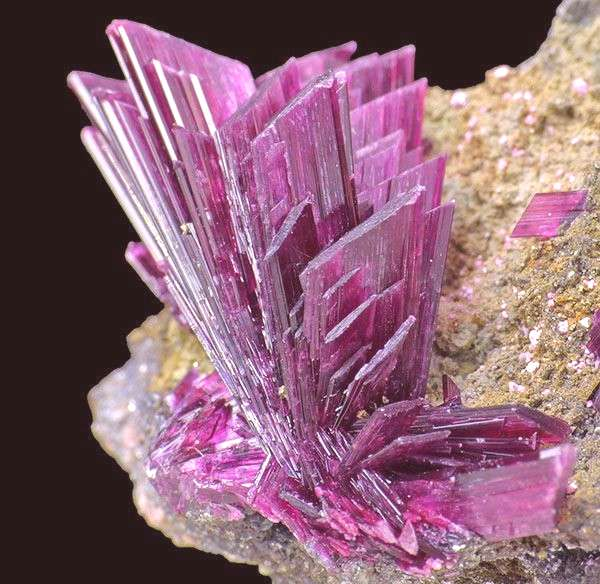 Decorative Rocks Ideas :   minerals specimens mineral specimens minerals collecting high quality mi